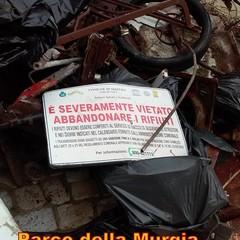 Associazione Falco Naumanni - Foto di Enzo Di Pede