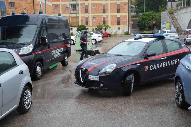 Carabinieri di Matera: attività antidroga