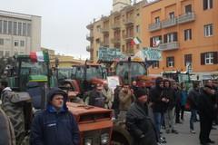 Presentato a Matera il Forum per la Riforma Agraria