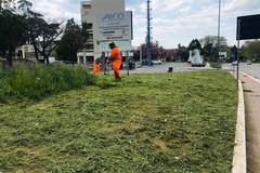 Riprende la manutenzione del verde pubblico