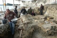 Paleontologia: riprendono studi sul fossile della balena Giuliana