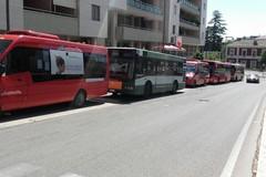 Festa della Bruna, tre linee di bus per il centro