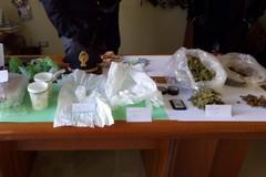 Cocaina e marijuana nascoste tra i rami degli ulivi