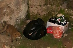 Sassi di Matera: rifiuti intasano griglie di scolo di acqua piovana