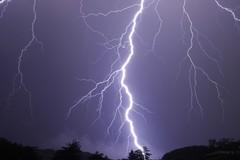 Grandinate nel Materano, Regione chiede stato di calamità naturale