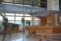 Un presepe di cartapesta nell'ospedale di Matera