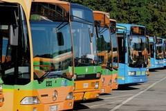 """Quarto, Basilicata Positiva: """"autobus lucani troppo vecchi"""""""