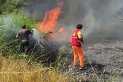 Incendi a Matera, cresce l'indignazione