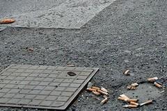 Inquinamento zero, Matera aderisce alla settimana verde europea