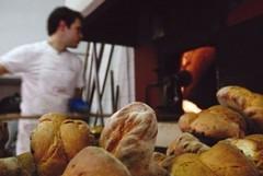 Confesercenti Matera, mercato del pane in crisi