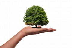 Agronomi e forestali a raccolta per discutere del mondo che cambia