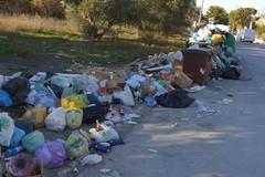 Gestione rifiuti, Sassone attacca Bennardi