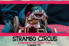 """Per """"Viaggi della fantasia"""" di scena il """"Srambo Circus"""""""