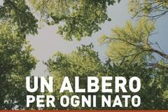 """Nuova tappa del progetto """"Un albero per ogni nato"""""""