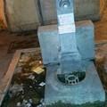 La fontana di via Gattini perde acqua, disagio per i cittadini