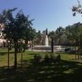 Nuovi alberi e più ombra nella Villa comunale