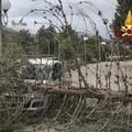 Alberi caduti per raffiche di vento, a Matera tettoia cade su strada