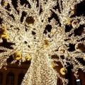Albero di Natale di 15 metri e luci diffuse, ecco i luoghi scelti