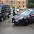 Attività antidroga dei carabinieri, un arresto