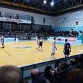 Basket, nella bolgia del PalaSassi l'Olimpia supera il Palestrina