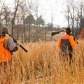Anche a Matera la raccolta firme contro la caccia