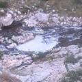 Inquinamento del torrente Gravina, chiesto il tavolo istituzionale