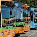 Sanità e trasporti, Movimento 5 stelle attacca il governo Bardi