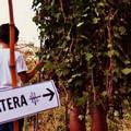 In cammino per Matera 2019