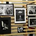 Artisti per vico Piave, raccolti 12.540 euro