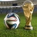 Anche a Matera è febbre da Mondiali 2014