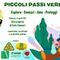 """Appuntamento a Colle Timmari con i """"Piccoli Passi Verdi"""""""