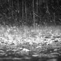 Maltempo: allerta meteo in Basilicata per temporali