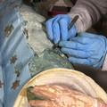 """Progetto """"Opera Tua"""", restaurata la statua di Santa Lucia"""