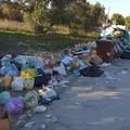 Nuovo sistema rifiuti, Comune concentrato su soluzione problemi