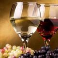 1,7 meuro da PNS settore vitivinicolo: approvate graduatorie
