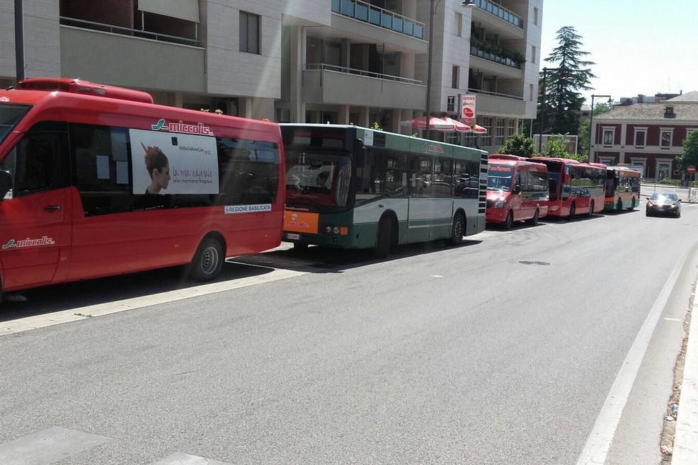 Bus Trasporti Viabilità