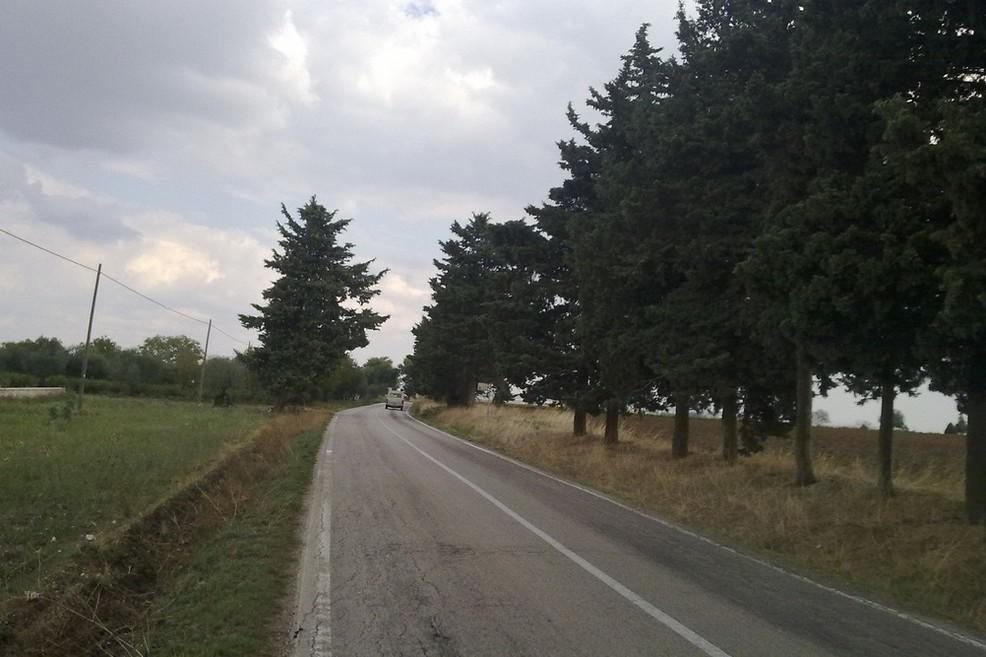 Raddoppio collegamento Matera-Gioia: diverrà realtà?