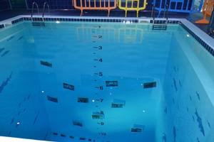 La mostra subacquea di Aqvuaworld