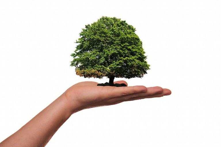 Pianeta sostenibile