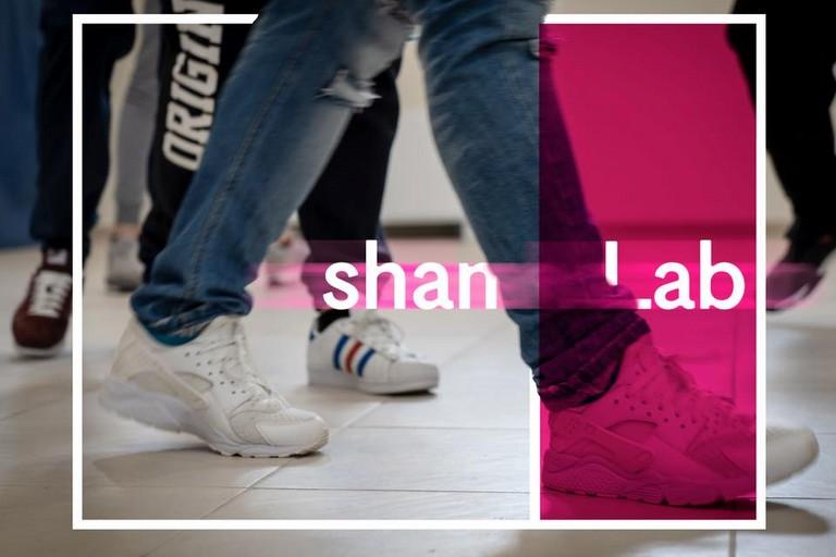 shame lab